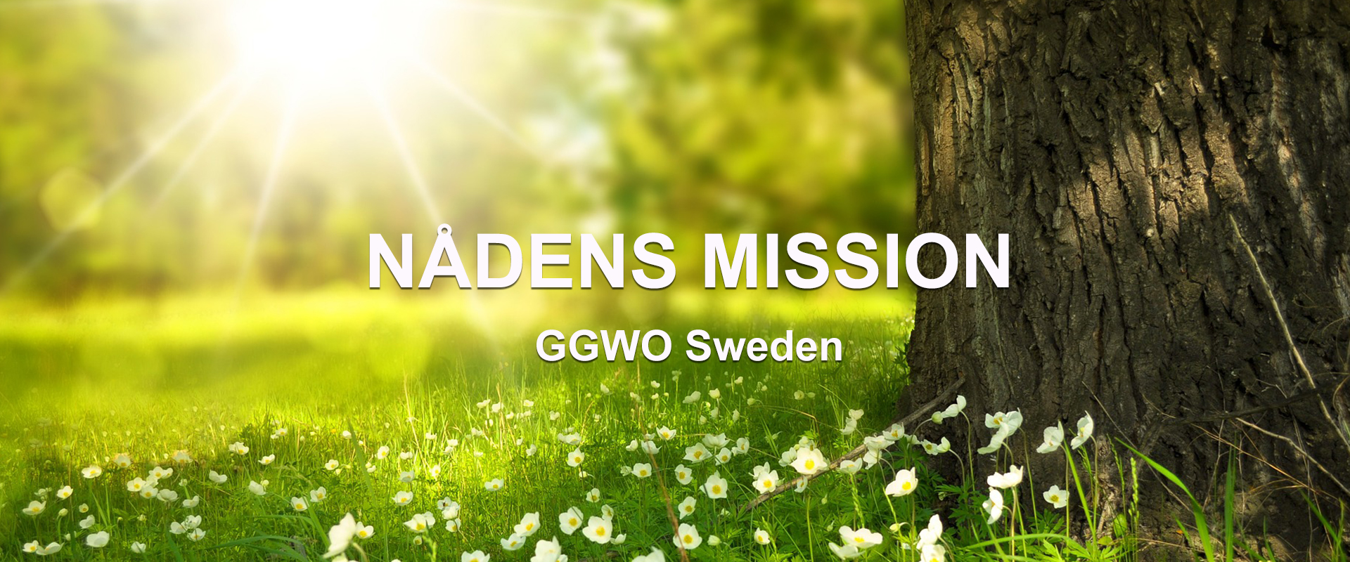 Bildtext: Nådens Mission, ggwo Sweden